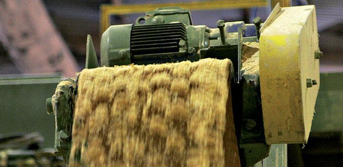 Nachhaltig nutzen: Auch Biomasse entzieht dem Waldboden Nährstoffe