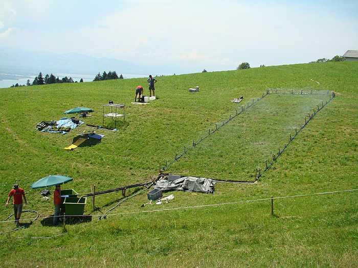 Starkregenexperiment im Ruggbach-Einzugsgebiet (Standort Stegen)