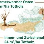 Der erhebliche Unterschied des Totholzvorkommens in Österreich ergibt sich aufgrund des vermehrten Vorkommens von <span class='term-desc-marker' alt='Schutzwald'>Schutzwald</span> im Westen und der höheren Nutzungsintensität im Osten