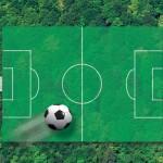 Die Waldfläche in Österreich ist zirka vier Millionen <span class='term-desc-marker' alt='Hektar'>Hektar</span> groß, das entspricht rund 5,5 Millionen Fußballfeldern