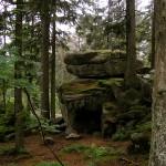 Gezielte Platzierung von Fels und Baum im Bildausschnitt. Foto: BFW