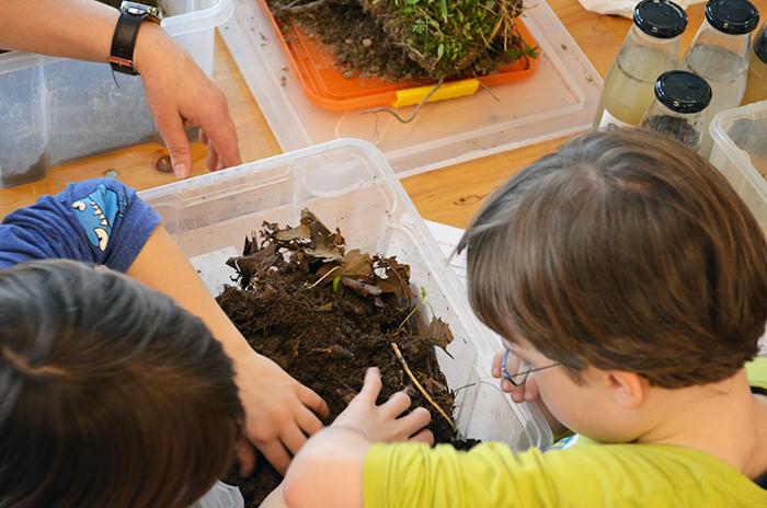 Kinder ertasten den Boden © BFW