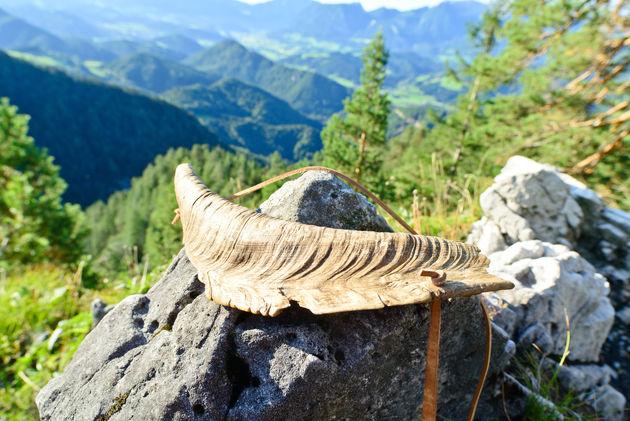 Historischer Hirschruf im Nationalpark Kalkalpen